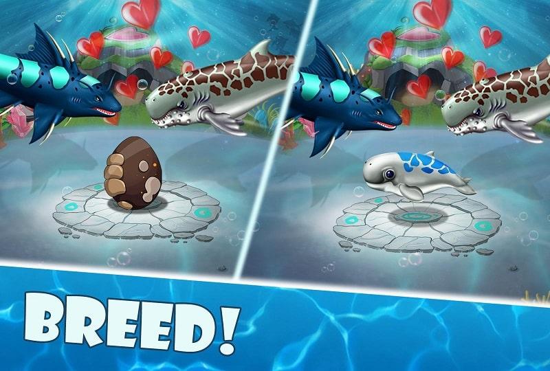 Shark World mod apk free