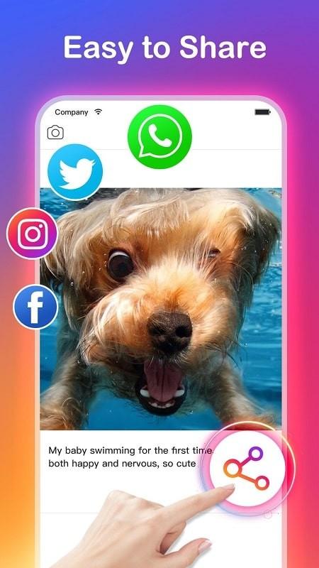 Video Downloader for Instagram mod apk