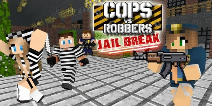 CopsVRobbers1