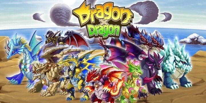 DragonxDragon