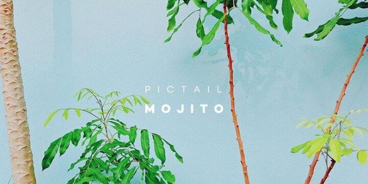 PICTAIL - Mojito